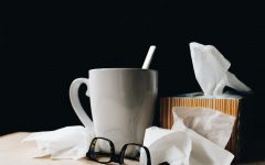 Navigation to Story: Sick remedies to help you survive flu season