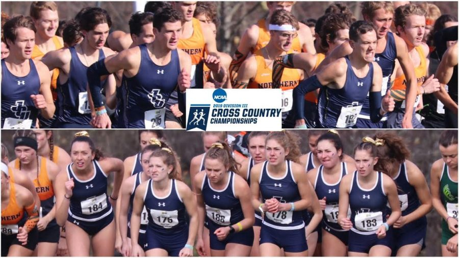 Cross Country qualifies for National Championship after record race at regionals