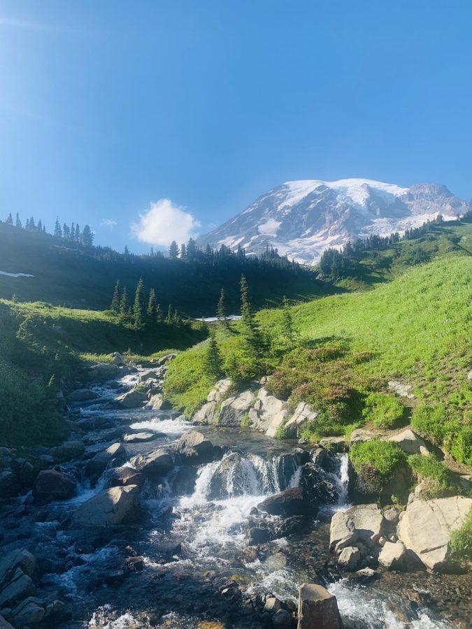 Mt. Rainier National Park. Photo by TJ Lindstrom