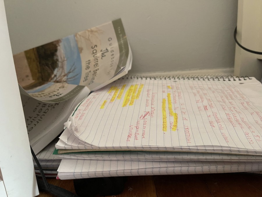 Kaitlin Ryan's notebook (pictured above) displays wear and tear, with frayed, curled edges as it serves many purposes to her throughout the day.