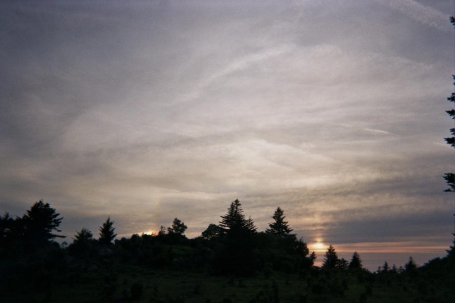 A+forest%2C+sky+and+sun+transitioning+into+the+gloaming.