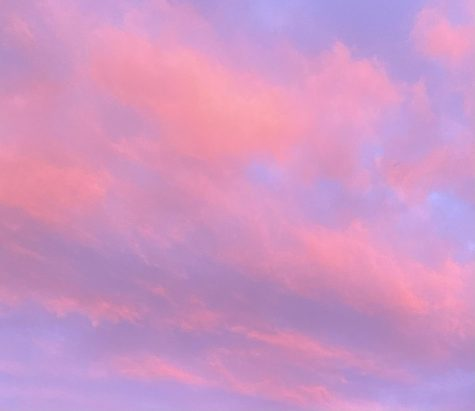 Altocumulus clouds stained in a spectrum of pinks, violets and blues in Upper St. Clair, PA.